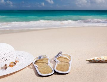 Poletne počitnice